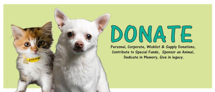 Donate: personal and corporate, wishlist and supplies, special funds, sponsor an animal